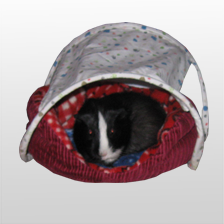 "Cavy Canopy & 12""Lounger Bed"