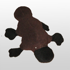 Platypus small cuddler